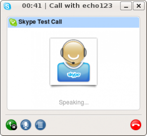 skype test call